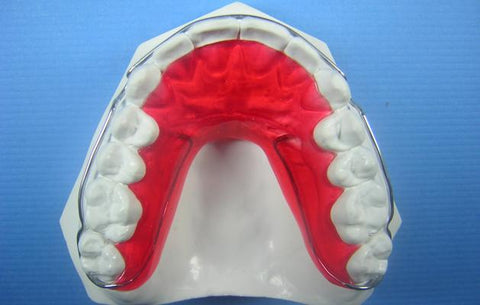 ARC Comfort Retainer Orthodontic Education Model