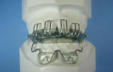 Teuscher Activator Orthodontic Model
