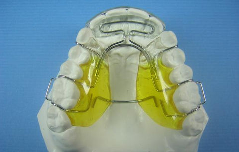 Modified Spring Retainer Orthodontic Model +2