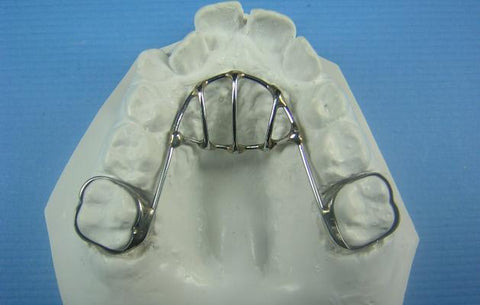 Thumb Habit Orthodontic Model