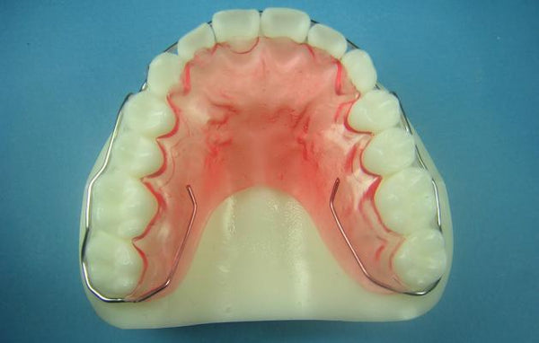 Wraparound Retainer Orthodontic Model