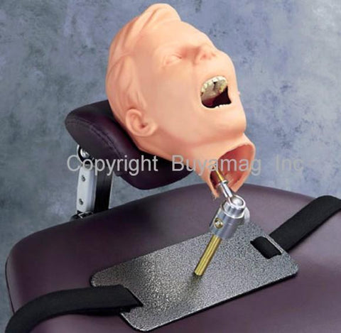 Child Periodontal Hygiene Manikin