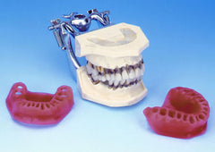 periodontal-hygiene-model