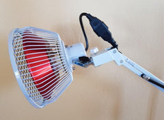 TDP Lamp Infrared Oversized Head FDA 510K