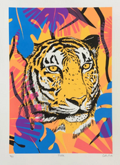 Tiger Screenprint by Caitlin Parks