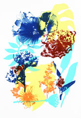Spring Flowers Screenprint by Melissa North