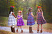 Pearl Dress & Pinafore - Violette Field Threads  - 74