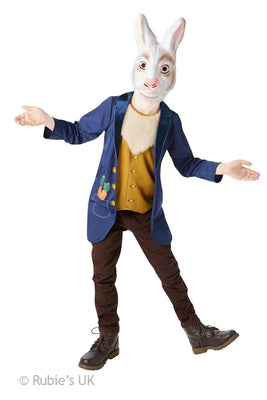 Boy's Mr Rabbit Fancy Dress Costume