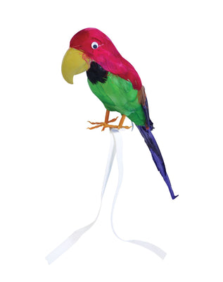 Parrot. Feather Covered. 15