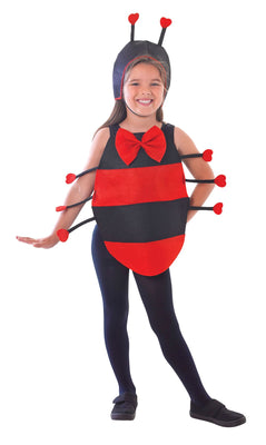 Ladybird Dress Up Kit