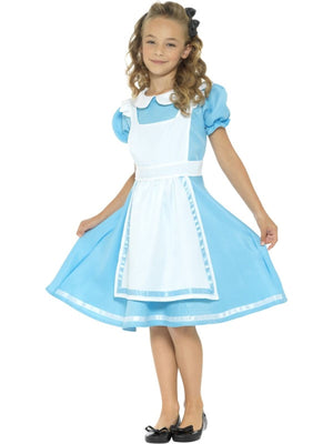 Wonderland Princess Fancy Dress Costume