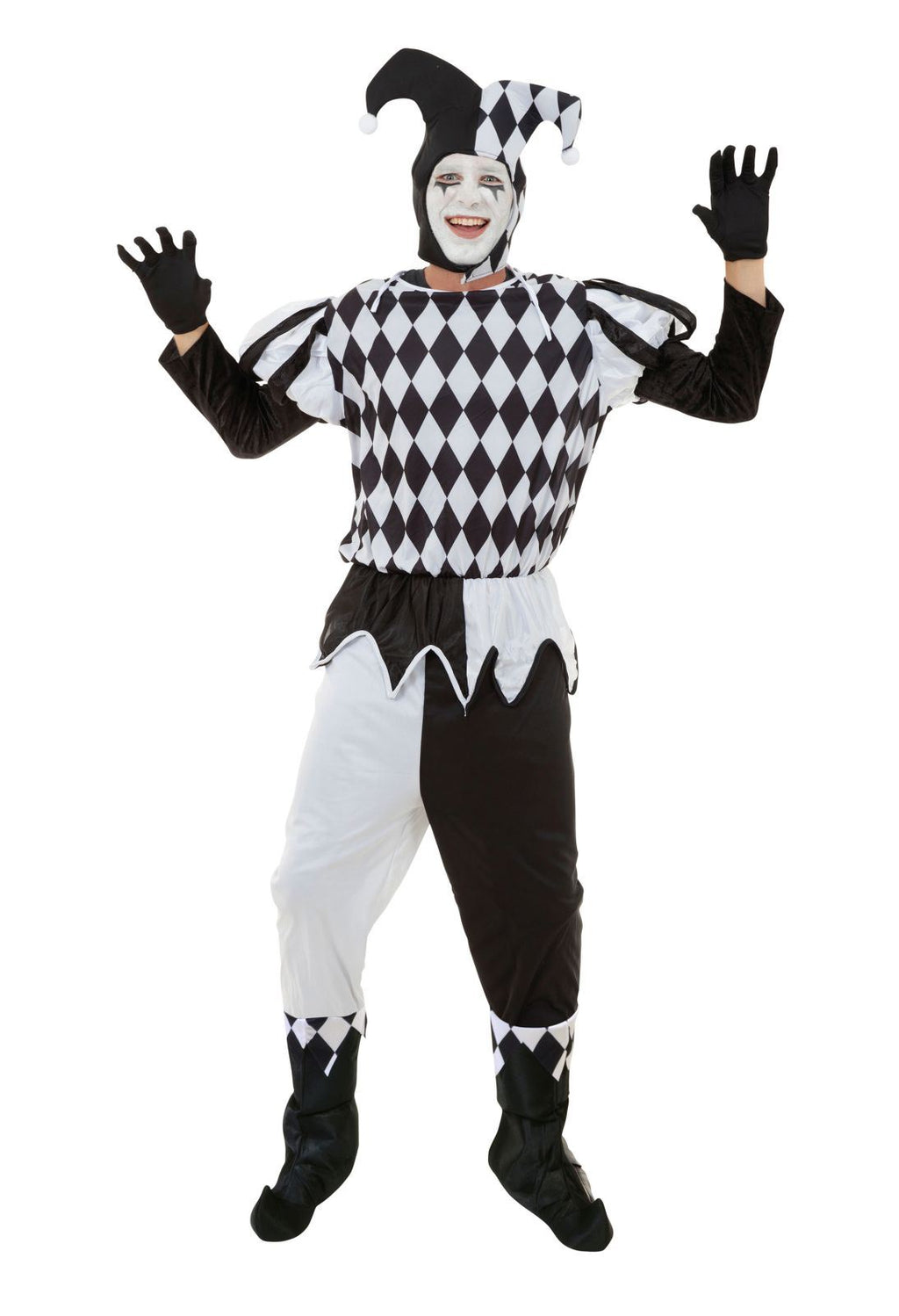 Harlequin Male Costume