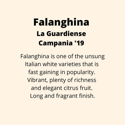 ADD ON: Bottle of Falanghina