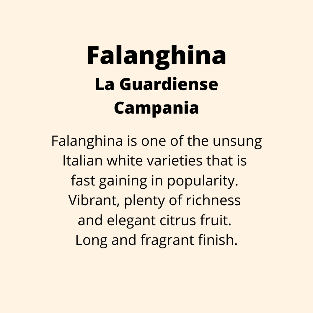 ADD ON: Bottle of Falanghina, La Guardiense, Campania