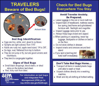Bedbug Tip Card for Travelers