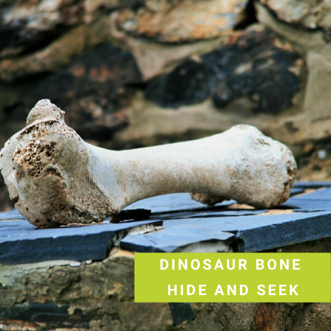 Dinosaur party Game - Dinosaur Bone Hide and Seek