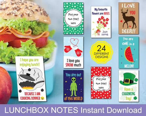 Adults Lunchbox Notes, Love Notes