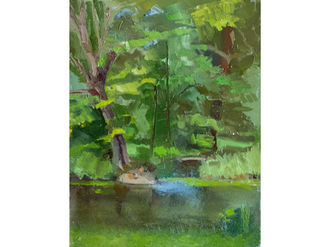 central park duck pond-Artistic Giclee prints-scottbenites
