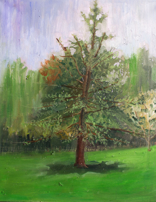 LANDSCAPE PAINTING OF TREE IN CENTRAL PARK