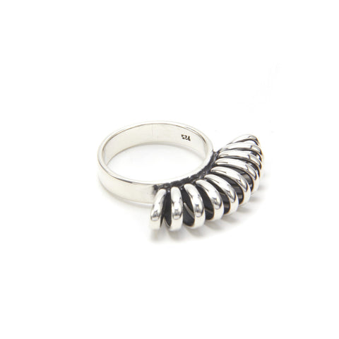 Anillo Chinicuil