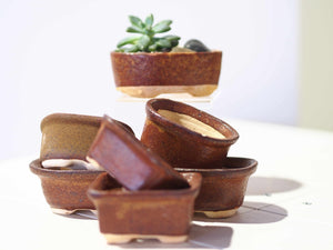 Handmade Mini Planters - Brown Assorted Oval+Tub