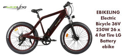 Advantages of Fat Tire Bikes Ebikeling