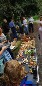 3rd October Mushroom Hunt with a chef