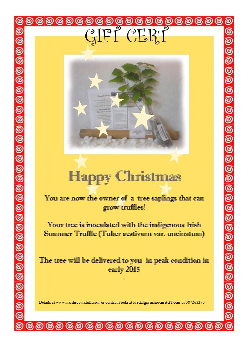 Truffle Inoculated Hazel Sapling Or Voucher Incl Shipping Within