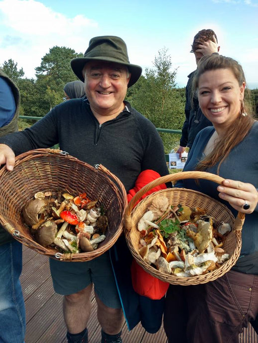 Mushroom Hunt, Small Group  on Mon 5th October close to Dublin