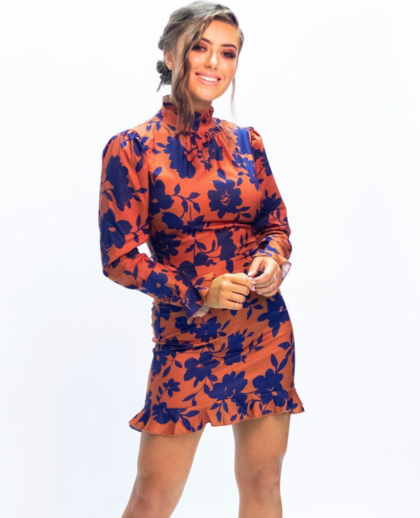 Paris Floral High Neck Long Sleeve Dress
