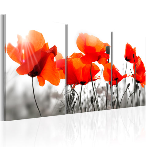 Tableau - Charming Poppies