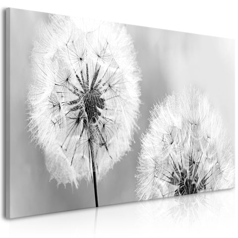 Tableau - Fluffy Dandelions (1 Part) Grey Wide