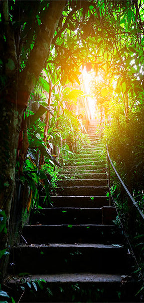 Papier-peint pour porte - Photo wallpaper - Stairs in the urban jungle I