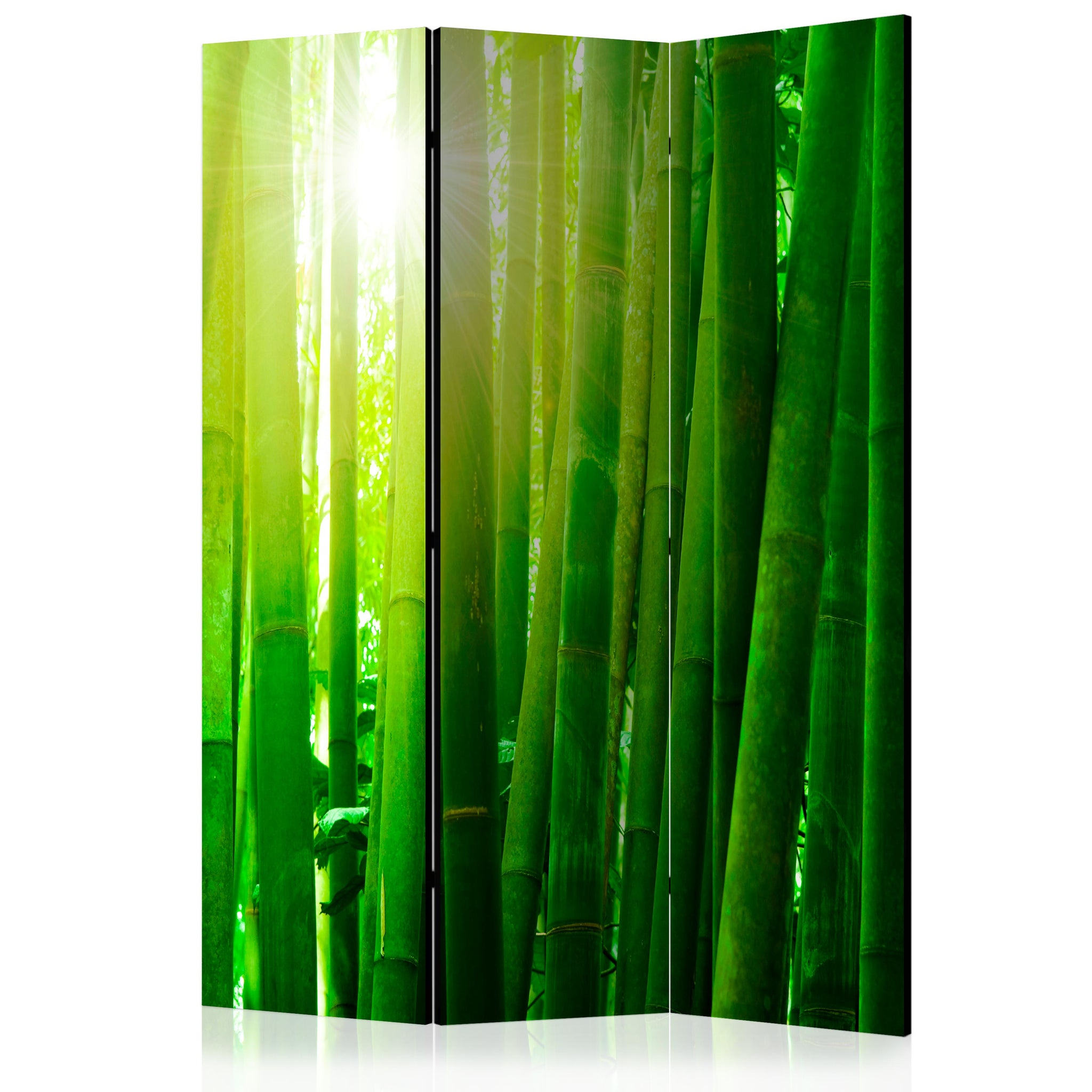Paravent 3 volets - Sun and bamboo [Room Dividers]