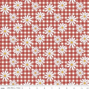 C5901 Red Gingham Girls
