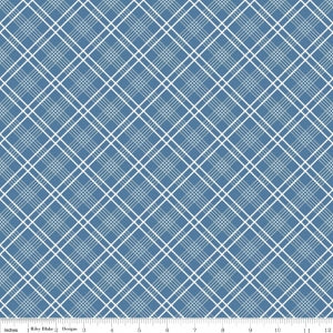 C5904-Blue Gingham Girls