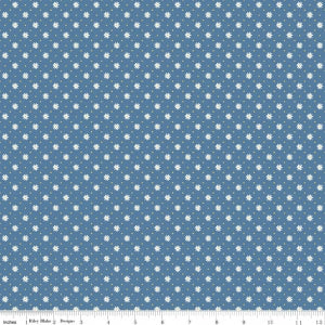 C5905 Blue Gingham Girls