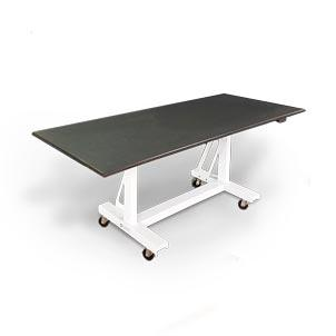 "Didage DS2001 30"" x 72"" Radiolucent Cadaver Table"