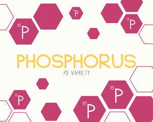 phosporus  from Energy Dates
