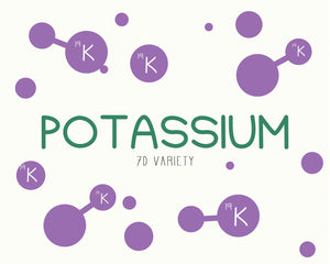 potassium from Energy Dates