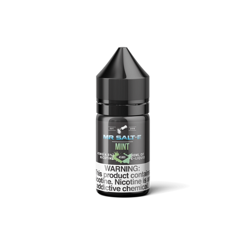 Mint Mr Salt E E Liquid 30ml - All Puffs