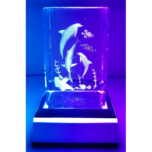 3D Inscribed Dolphin Sea Crystal Light