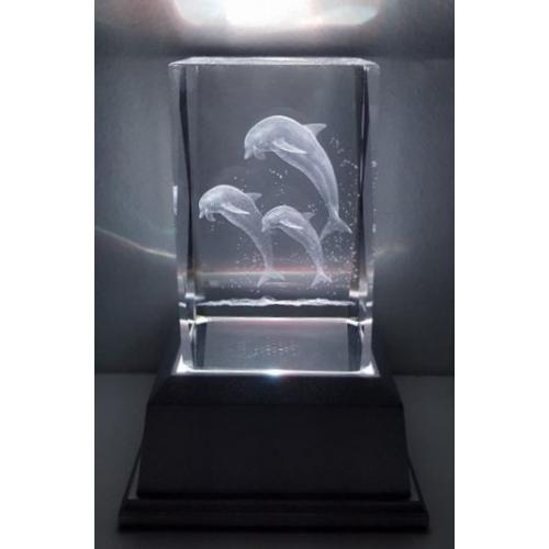 3D Inscribed Dolphin Crystal Light
