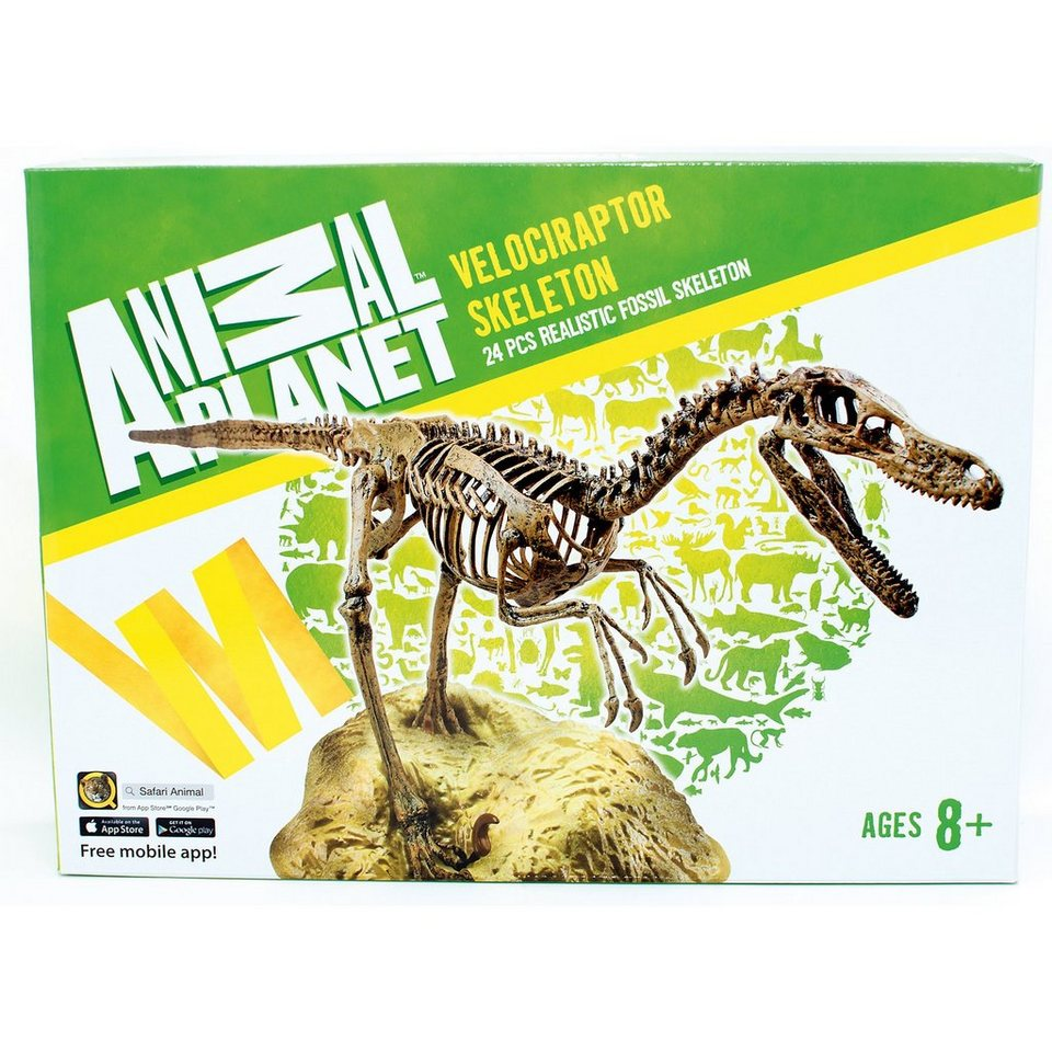 Animal Planet Velociraptor Skeleton 24 Pieces