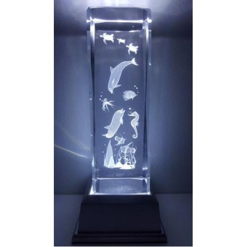 3D Inscribed Large Sea Crystal Light