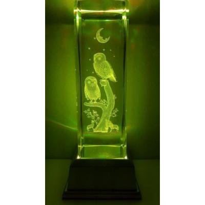 3D Inscribed Large Owl Crystal Light