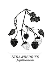 Ladda bilder till galleriet, Strawberries Poster