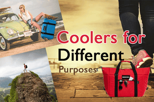 Cooler Bags are the Way To Go...  Hands Down!
