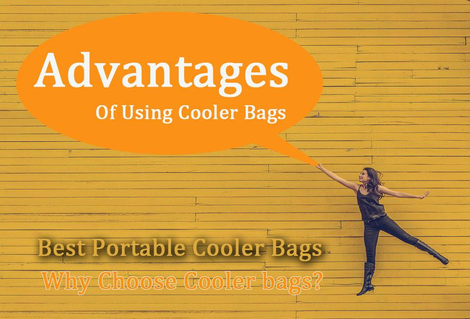 The Many Advantages Of Using Cooler Bags Over Hard Box Coolers, Regardless Of What You Like To Do