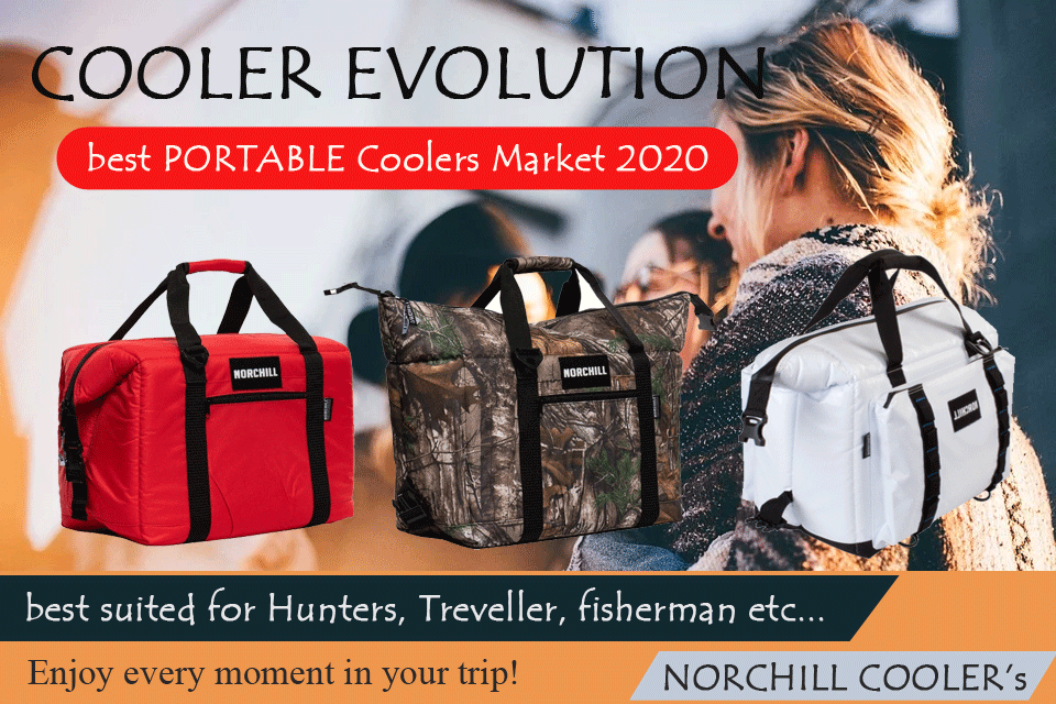 Travel Cooler Bags
